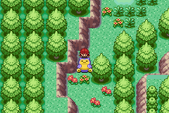 Pokemon Eruption (beta 2.1) - move it fatty - User Screenshot